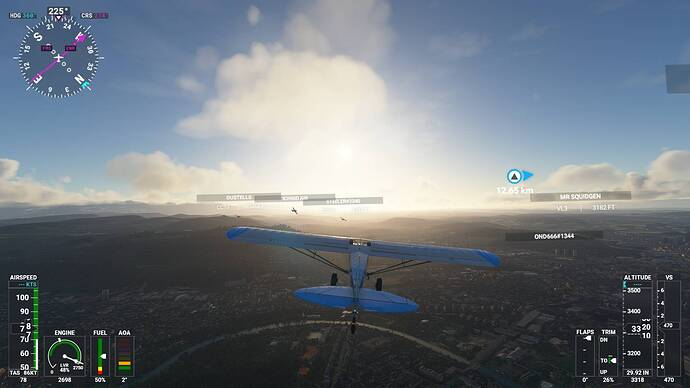Microsoft Flight Simulator 12.01.2021 20_38_59