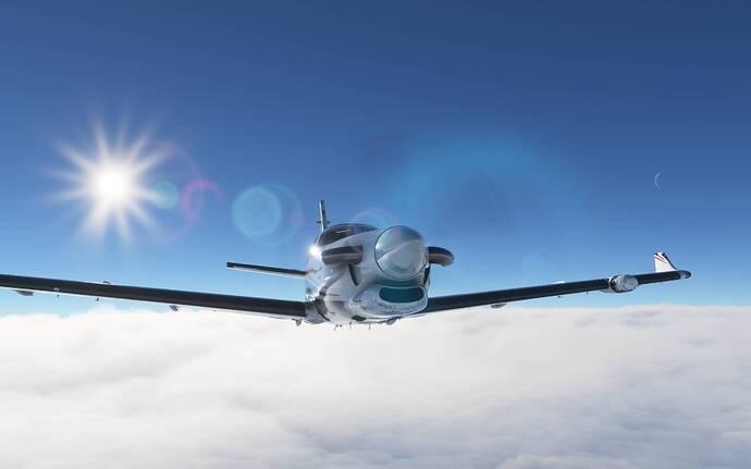 Microsoft Flight Simulator 12_10_2020 11_18_55 AM
