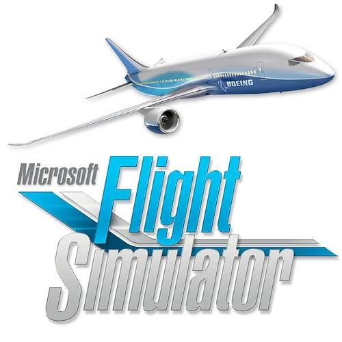 MicrosoftFlightSimulator