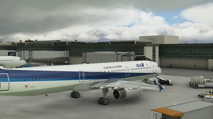 2021-03-29 20_59_06-Microsoft Flight Simulator - 1.14.6.0