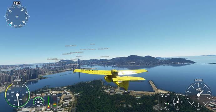 Microsoft Flight Simulator Screenshot 2021.01.22 - 21.39.11.00