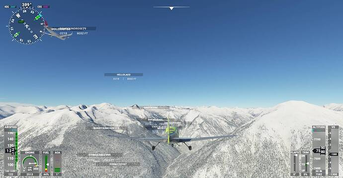 Microsoft Flight Simulator Screenshot 2021.01.08 - 19.59.40.06