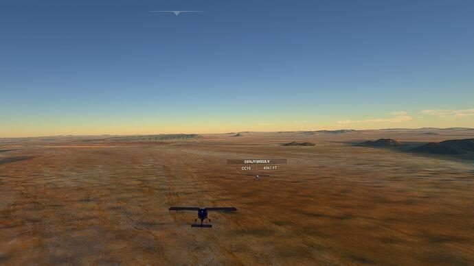 Microsoft Flight Simulator 03_02_2021 20_53_15 (2)