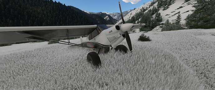 Microsoft Flight Simulator 1_5_2021 1_11_35 PM