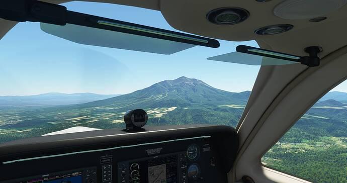 Microsoft Flight Simulator 4_23_2021 10_53_03 AM