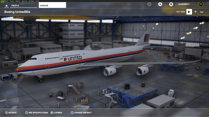 UAL747Painted3