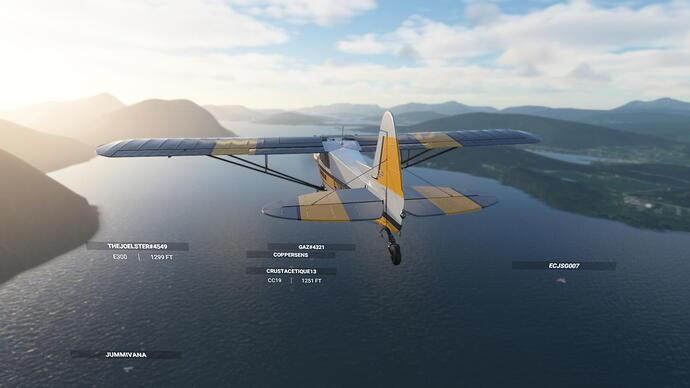 Microsoft Flight Simulator Screenshot 2021.03.19 - 23.26.02.60
