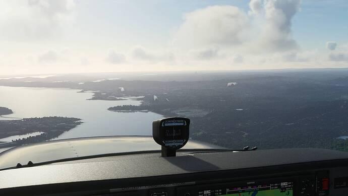 Microsoft Flight Simulator 1_14_2021 4_47_32 PM