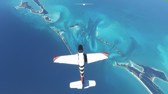 Microsoft Flight Simulator 17_08_2020 14_51_09