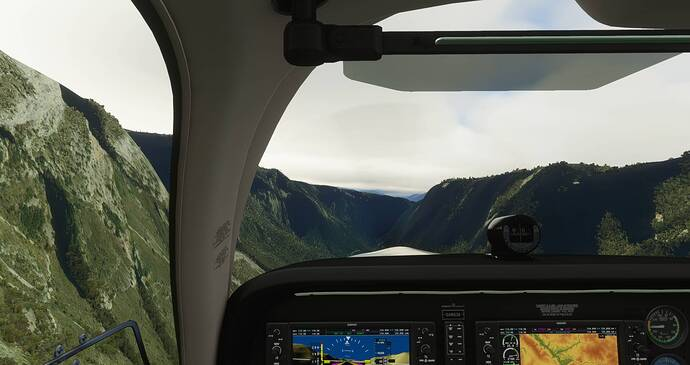 Microsoft Flight Simulator 4_21_2021 8_42_45 AM
