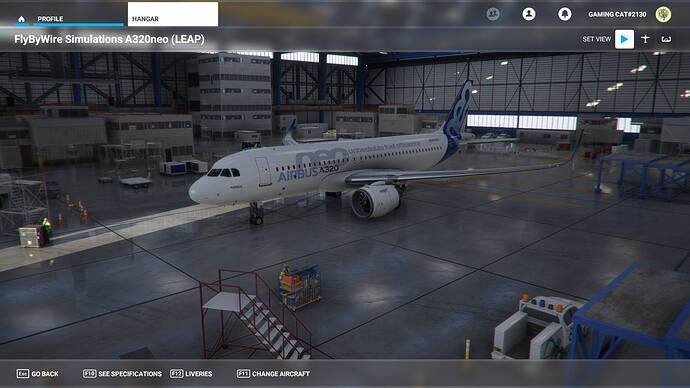 Microsoft Flight Simulator 06.04.2021 18_20_10