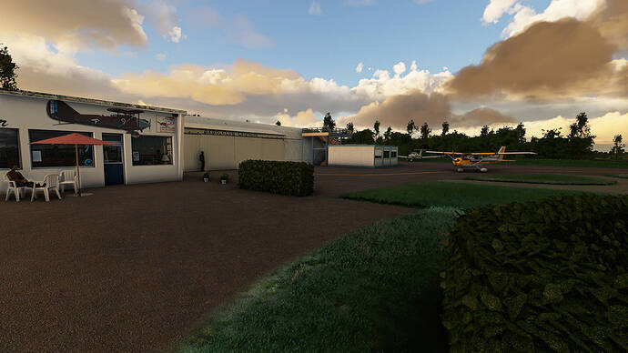 Microsoft Flight Simulator 2021-05-05 14_43_43