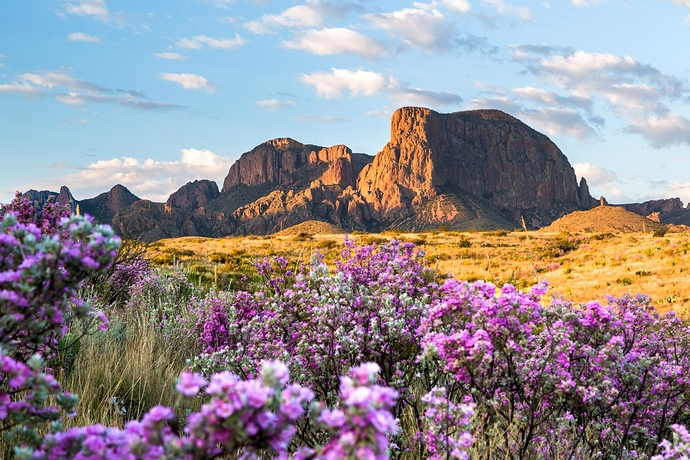 Big-Bend-National-Park-GettyImages-516259396
