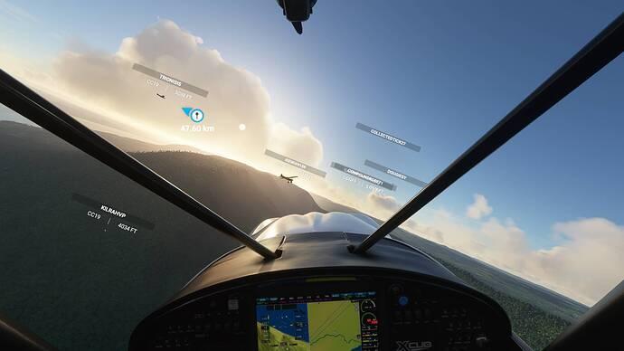 Microsoft Flight Simulator 12.01.2021 21_07_00