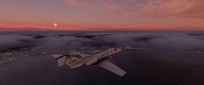 Microsoft Flight Simulator 02_10_2020 20_51_31