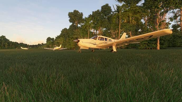 Microsoft Flight Simulator 02.04.2021 20_44_40