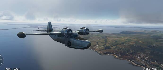 Goose-flying