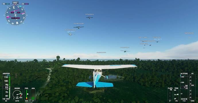Microsoft Flight Simulator Screenshot 2021.01.13 - 21.25.49.77
