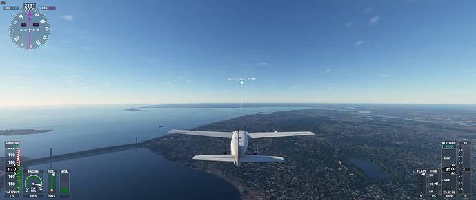 Microsoft Flight Simulator 24_11_2020 19_38_50