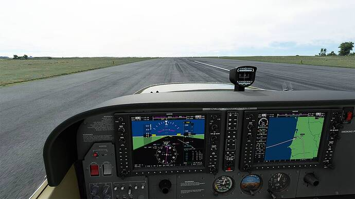 Microsoft Flight Simulator 2021-05-03 10_38_58