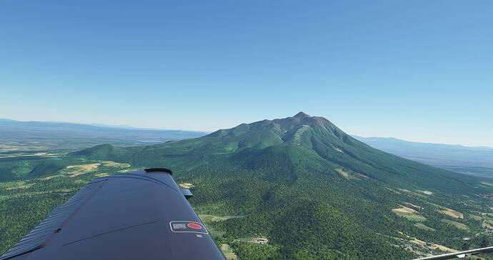 Microsoft Flight Simulator 4_23_2021 9_50_18 AM