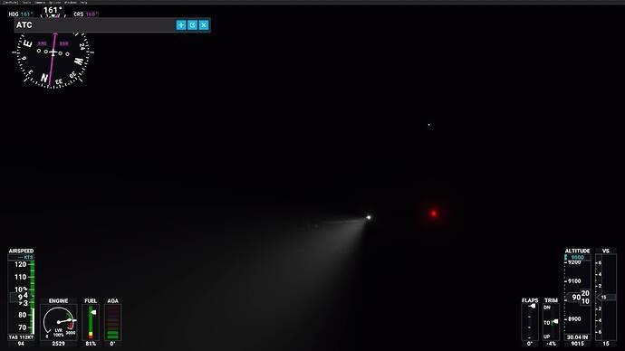 Microsoft Flight Simulator 01.01.2021 17_41_11
