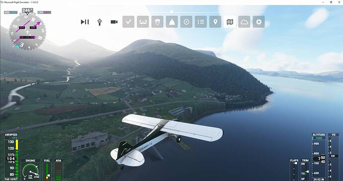 Microsoft Flight Simulator 3_19_2021 9_30_08 PM