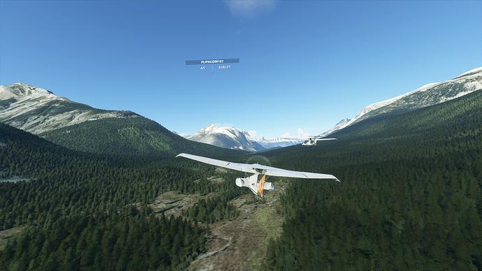 Microsoft Flight Simulator Screenshot 2020.10.23 - 15.38.07.38
