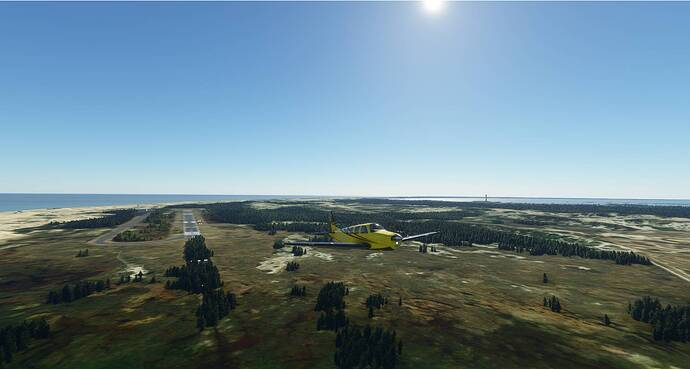 Microsoft Flight Simulator 4_20_2021 8_39_36 AM