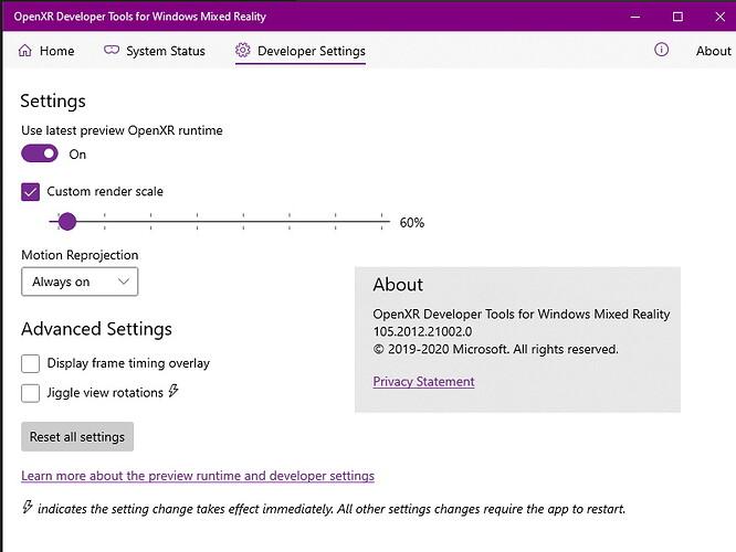 OpenXR settings