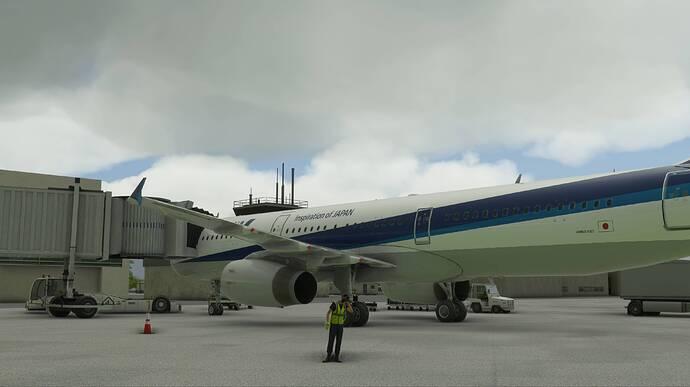 2021-03-29 20_59_47-Microsoft Flight Simulator - 1.14.6.0