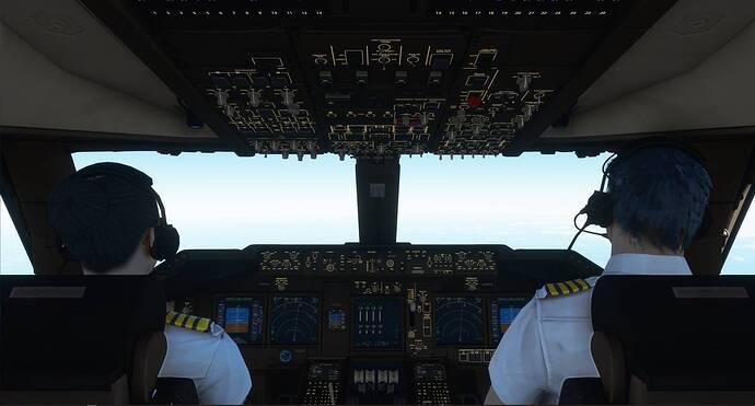Pilot models