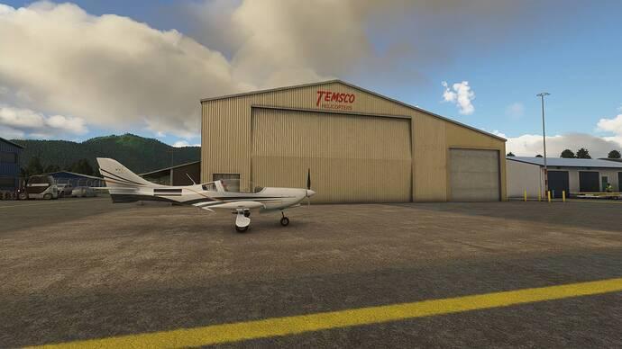 Microsoft Flight Simulator 19_11_2020 19_14_13