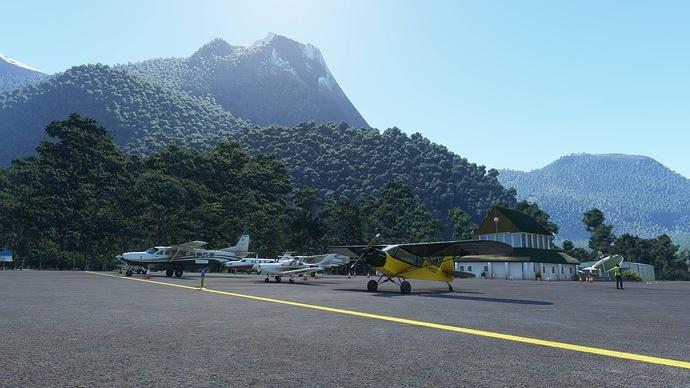 Microsoft Flight Simulator 2020_11_1 20_58_44