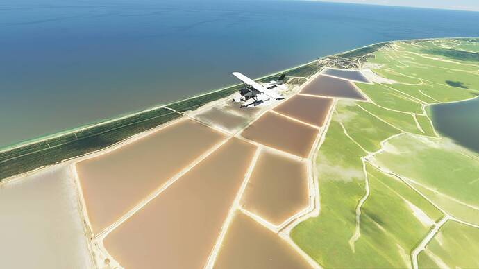 Microsoft Flight Simulator Screenshot 2021.08.10 - 19.47.54.47