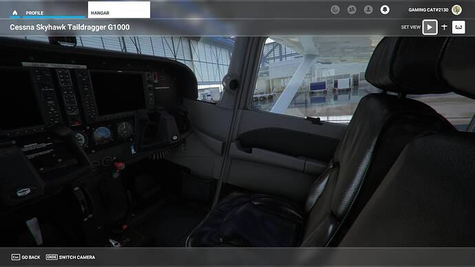 Microsoft Flight Simulator 30.07.2021 00_24_18