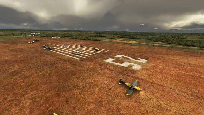 Microsoft Flight Simulator 8_1_2021 1_50_17 PM