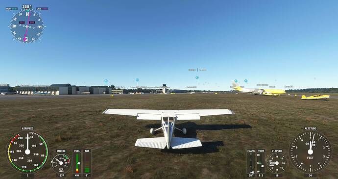 Microsoft Flight Simulator Screenshot 2021.10.08 - 21.56.42.02