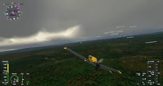 Microsoft Flight Simulator Screenshot 2021.08.01 - 22.13.07.00
