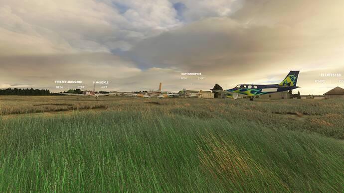 Microsoft Flight Simulator 9_4_2021 2_37_49 PM