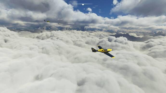 Microsoft Flight Simulator 8_1_2021 11_52_28 AM
