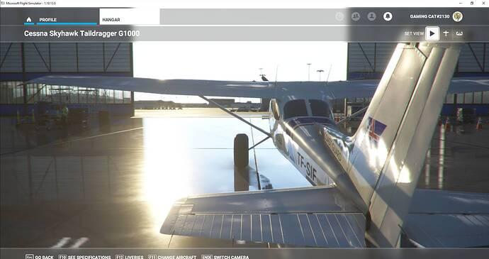 Microsoft Flight Simulator 30.07.2021 00_23_12