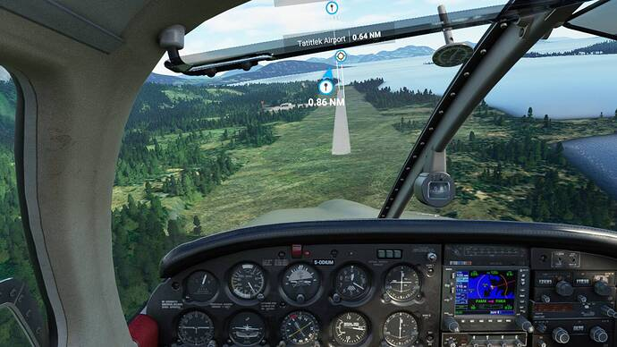 Microsoft Flight Simulator 6_4_2021 8_12_01 PM