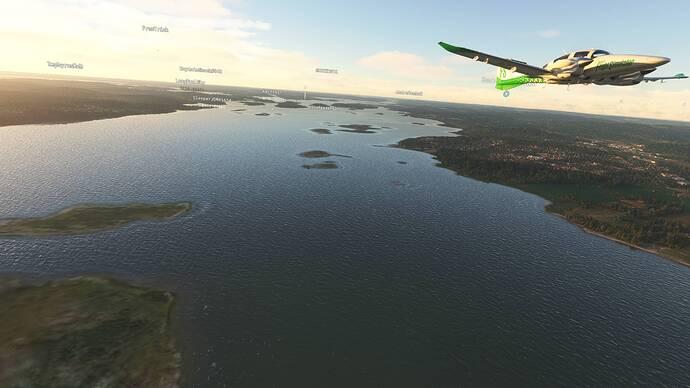 Microsoft Flight Simulator 7_31_2021 2_16_06 PM