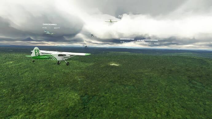 Microsoft Flight Simulator 9_6_2021 12_00_32 PM