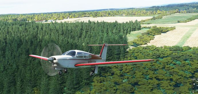 Microsoft Flight Simulator 5_28_2021 10_30_54 AM_result
