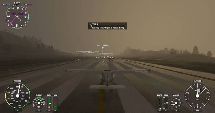Microsoft Flight Simulator Screenshot 2021.07.17 - 20.28.44.05