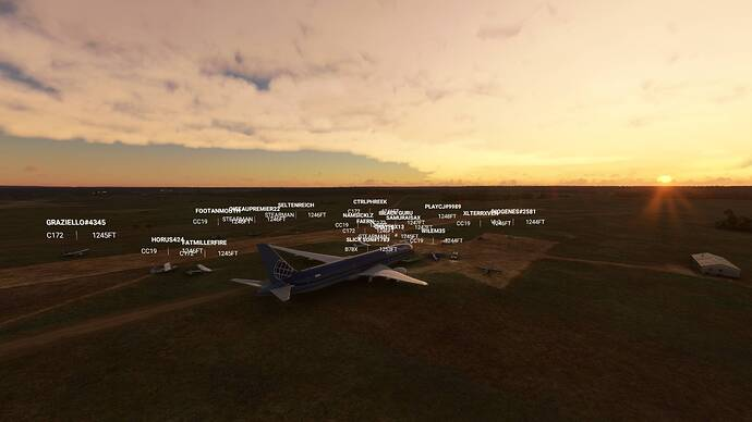 Microsoft Flight Simulator 9_6_2021 2_17_47 PM