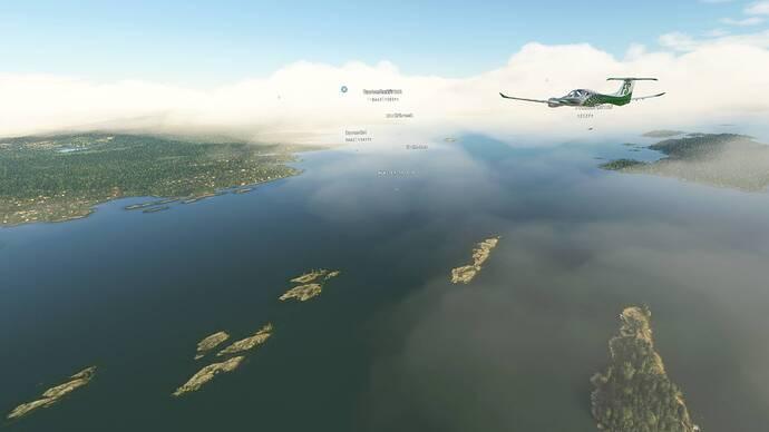 Microsoft Flight Simulator 7_31_2021 1_24_33 PM