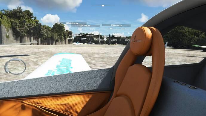 Microsoft Flight Simulator Screenshot 2021.08.21 - 00.02.45.84
